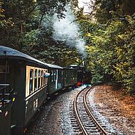 Der Rasende Roland aus dem Zug heraus.