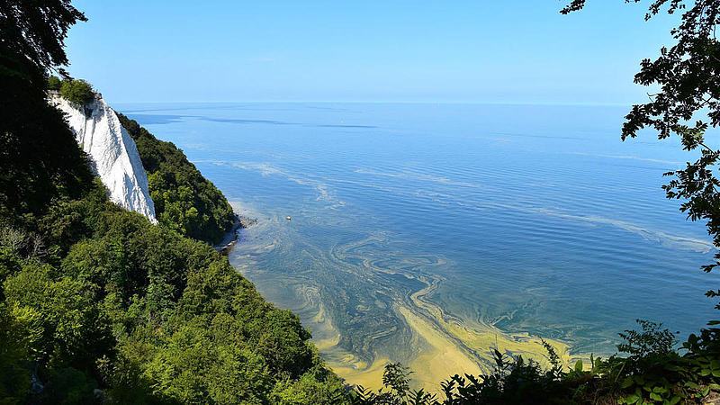 Panoramic view of the Jasmund National Park with the famous chalk cliff Königsstuhl Jasmund.
