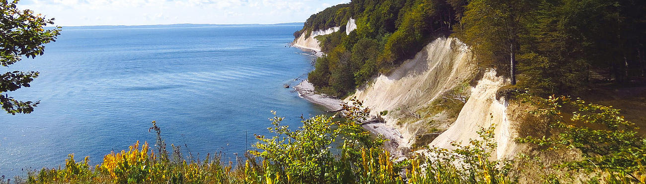 Panoramic view of the chalk cliffs in the Jasmund Resort.